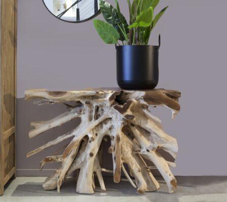 קונסולה משורש עץ טבעי