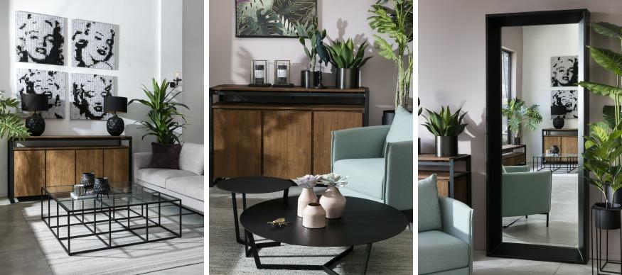 הכנסת צמחים בסלון