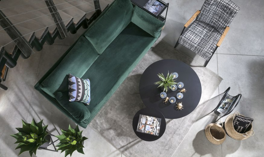 צמחים בסלון